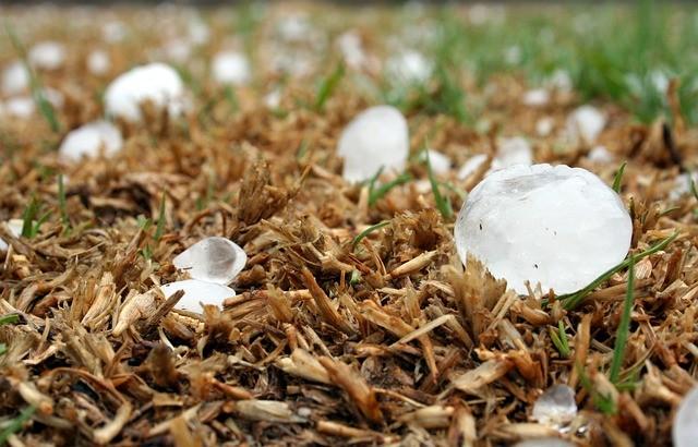 מה ההבדל בין שלג לבין ברד?