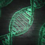 האם יש DNA בשתן?