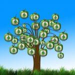 מה ההבדל בין פנסיה תקציבית לצוברת?