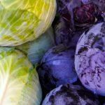 מה ההבדל בין כרוב לבן לכרוב סגול?